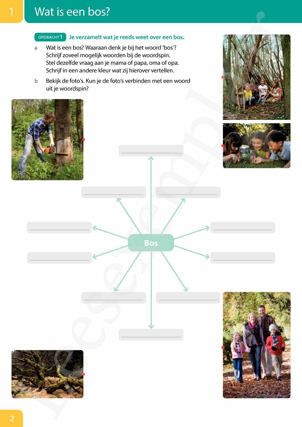 Preview: Mikado 3 Thema Het bos (editie 2018)