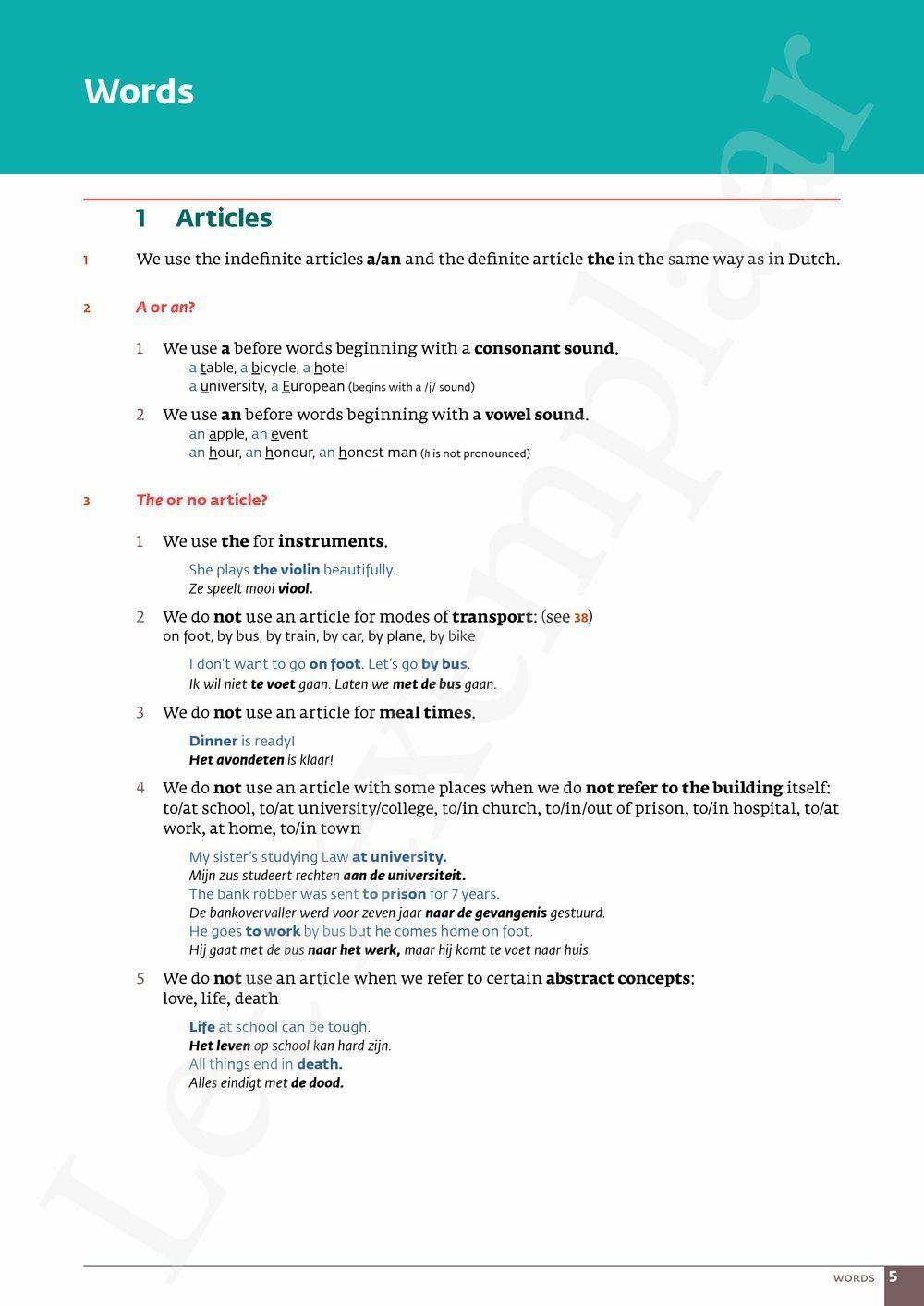 Preview: Ace essential grammar