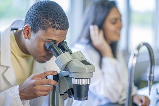 Wetenschappen basisoptie